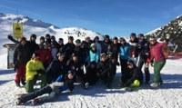 Ski-Alpine